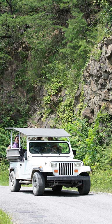 Nantahala Jeep Tours